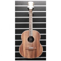 Cole Clark CCLL2E-BLBL Little Lady 2E Acoustic / Electric Guitar all Blackwood